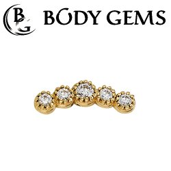 Body Gems 14kt Gold 5 Gem Arc Cluster Threaded End Dermal Top 18 Gauge 16 Gauge 14 Gauge 12 Gauge 18g 16g 14g 12g
