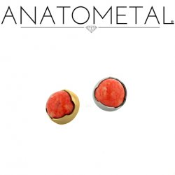 Anatometal 18kt Gold Threaded 2.5mm Prong-set Cabochon Gem End 18g 16g 14g 12g