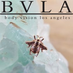 "BVLA 14Kt Gold ""Bumblebee"" Threadless End 18g 16g 14g Body Vision Los Angeles ""Press-fit"""