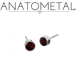 Anatometal Titanium 2mm Bezel-set Gem Earrings (Pair)