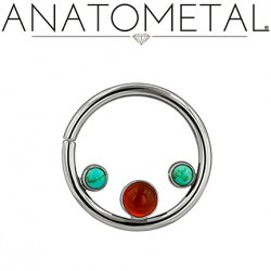 Anatometal Titanium Seam Ring with 3 Gems Inside 18 Gauge 16 Gauge 18g 16g