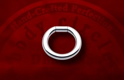 Body Circle Surgical Stainless Steel Captive Bar Segment Ring 6g 6 Gauge