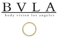 BVLA 14kt Gold Seam Ring 20g Body Vision Los Angeles