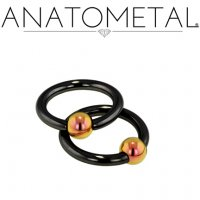 Anatometal Niobium Captive Bead Ring with Titanium Bead 6 Gauge 6g