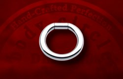 Body Circle Surgical Stainless Steel Captive Bar Segment Ring 4g 4 Gauge