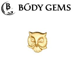 Body Gems 14kt Gold Owl Head Threaded End Dermal Top 18 Gauge 16 Gauge 14 Gauge 12 Gauge 18g 16g 14g 12g