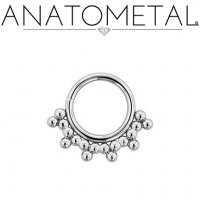 Anatometal Surgical Steel Seam Ring With Silver Sabrina Overlay 16 Gauge 16g