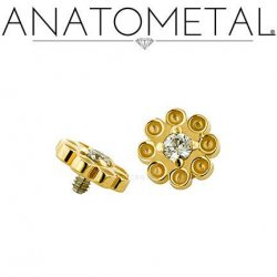 Anatometal 18kt Gold Dazy Threaded End 2mm Gem 18g 16g 14g 12g