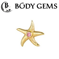 Body Gems 14kt Gold Starfish Threaded End Dermal Top 18 Gauge 16 Gauge 14 Gauge 12 Gauge 18g 16g 14g 12g