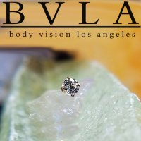 BVLA 14kt Gold 4-Prong 2.5mm Gem Threaded End Dermal Top 18g 16g 14g 12g Body Vision Los Angeles