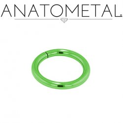 Anatometal Titanium Seam Ring 10 Gauge 10g