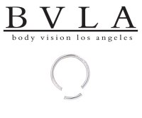 BVLA 14kt Gold Segment Ring 14g Body Vision Los Angeles