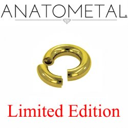 "Anatometal Titanium 7/8"" Segment Ring 2 Gauge 2g Limited Edition"