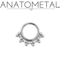 Anatometal Surgical Steel Seam Ring With Silver Sabrina Overlay 18 Gauge 18g