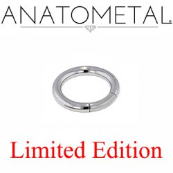 "Anatometal Surgical Steel 3/8"" Segment Ring 8 Gauge 8g Limited Edition"