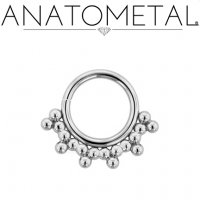 Anatometal Surgical Steel Seam Ring With Silver Sabrina Overlay 14 Gauge 14g