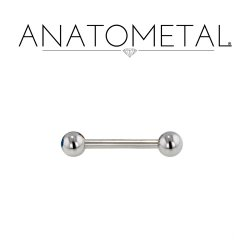 10 Gauge 10g Anatometal Surgical Stainless Steel Straight Barbell
