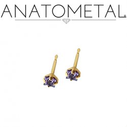Anatometal 18Kt Gold 2mm Princess Earrings (Pair)