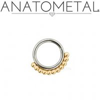 Anatometal Vaughn Surgical Steel Seam Ring With Gold Bead Overlay 18 Gauge 18g