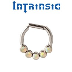 Intrinsic Body Titanium 5 Gem Septum Clicker Nose Ring Daith ring 2mm Gems 18 Gauge 16 Gauge 14 Gauge 18g 16g 14g
