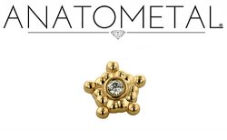 "Anatometal 18kt Gold 5 Cluster Sabrina Threadless End 1.5mm gem 18 Gauge 18g ""Press-fit"""