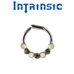 Intrinsic Body Titanium 7 Gem Septum Clicker Nose Ring Daith Ring 2mm Gems 18 Gauge 16 Gauge 14 Gauge 18g 16g 14g