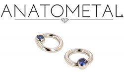 Anatometal Surgical Stainless Steel Gem Captive Bead Ball Closure Ring 12g 12 Gauge
