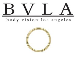 BVLA 14kt Gold Seam Ring 16g Body Vision Los Angeles