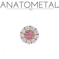 "Anatometal 18kt Gold Miro Threadless End 18 Gauge 18g ""Press-fit"""
