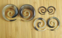 "Organic Golden Horn Super Spirals 12g-1"" (Pair) 2mm-25.5mm"