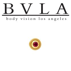 BVLA 14Kt Gold Millgrain Bezel Threaded End Dermal Top 5.5mm 18g 16g 14g 12g Body Vision Los Angeles
