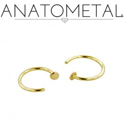 Anatometal 18kt Gold Nostril Nail 20 Gauge 20g