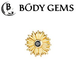 "Body Gems 14kt Gold ""Sunflower"" Threaded End Dermal Top 18 Gauge 16 Gauge 14 Gauge 12 Gauge 18g 16g 14g 12g"