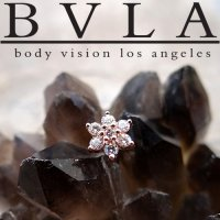 "BVLA 14kt Gold ""Flower\"" Threadless Gem End 18g 16g 14g \""Press-fit\"""