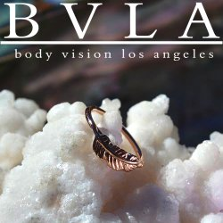 BVLA 14kt Gold Feather Ring Nose Nostril Septum Ring 20 Gauge 20g Body Vision Los Angeles