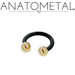 Anatometal Niobium Circular Barbell With Titanium Ball Ends 10 Gauge 10g