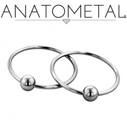 Anatometal Surgical Stainless Steel Large Diameter Fixed Bead Ring 10g 10 Gauge