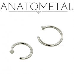 Anatometal Surgical Steel Nostril Nail Nose Ring 2mm Disk 20 Gauge 18 Gauge 20g 18g