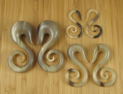 "Organic Golden Horn Swan Spirals 12g-1"" (Pair) 2mm-25.5mm"