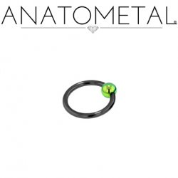 Anatometal Niobium Captive Ring with Titanium Bead 10 Gauge 10g